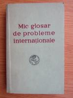 Anticariat: Mic glosar de probleme internationale
