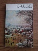 Michal Walicki - Bruegel