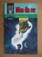 Anticariat: Mihaela Ion - Mana din cer