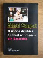 Anticariat: Mihai Cimpoi - O istorie deschisa a literaturii romane din Basarabia