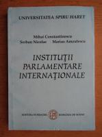 Mihai Constantinescu, Serban Nicolae, Marius Amzulescu - Institutii parlamentare internationale