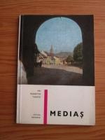 Mihai Murgu - Medias. Mic indreptar turistic