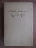 Mihail Sadoveanu - Opere (volumul 22)