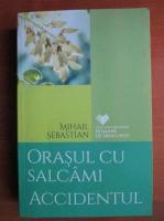 Mihail Sebastian - Orasul cu salcami. Accidentul
