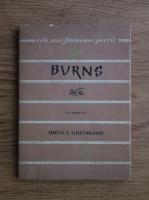 Anticariat: Mihnea Gheorghiu - Burns