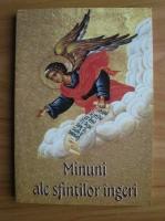 Anticariat: Minuni ale sfintilor ingeri