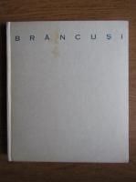 Anticariat: Mircea Deac - Constantin Brancusi