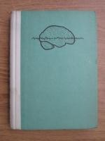 Mircea Steriade - Activitatea creierului