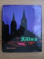 Miro Gregor - Zilina