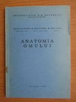 Anticariat: Miscalencu Dumitru - Anatomia omului
