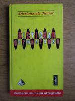 Anticariat: Monica Livia Plamadeala - Dictionar german-roman