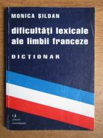Monica Sildan - Dificultati lexicale ale limbii franceze, dictionar
