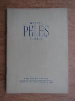 Muzeul Peles, Sinaia, ghid istoric artistic