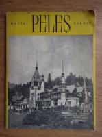 Anticariat: Muzeul Peles Sinaia