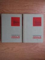 N. N. Mikluho-Maklai - Jurnal de calatorie (2 volume)