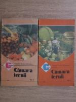 Natalia Tautu Stanescu - Camara iernii (2 volume)