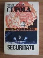 Neagu Cosma - Cupola. Securitatea vazuta din interior