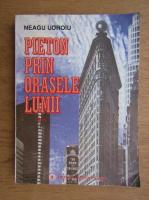 Neagu Udroiu - Pieton prin orasele lumii (volumul 2)
