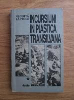 Negoita Laptoiu - Incursiuni in plastica transilvana