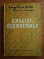 Nicolae Anghelescu Temelie - Analize gramaticale
