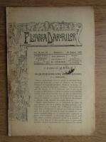 Nicolae Iorga - Revista Floarea darurilor, vol. II, no. 22 (1907)