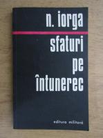 Nicolae Iorga - Sfaturi pe intuneric