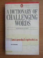 Anticariat: Norman W. Schur - A dictionary of challenging words