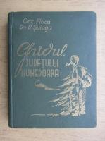 Anticariat: Octavian Floca - Ghidul judetului Hunedoara (1936)