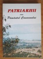 Anticariat: Patriarhii sau Pamantul Canaanului