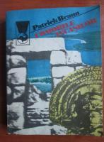 Anticariat: Patrick Braun - Comorile incasilor