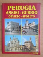 Anticariat: Perugia, Assisi, Gubbio, Orvieto, Spoleto