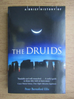 Peter Berresford Ellis - A brief history of the druids