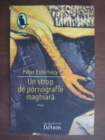 Anticariat: Peter Esterhazy - Un strop de pornografie maghiara