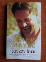 Anticariat: Peter Mayle - Un an bun