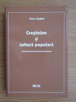Anticariat: Petre Anghel - Crestinism si cultura populara