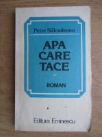 Anticariat: Petre Salcudeanu - Apa care tace
