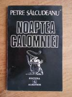 Anticariat: Petre Salcudeanu - Noaptea calomniei