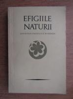 Anticariat: Petre Stoica, Mircea Tomus - Efigiile naturii. Antologia pastelului romanesc