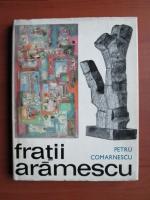 Anticariat: Petru Comarnescu - Fratii Aramescu