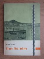 Petru Vintila - Orase fara arhive