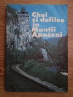 Pompei Cocean - Chei si defilee din Muntii Apuseni