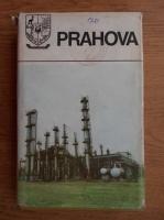 Anticariat: Prahova. Monografie (Judetele patriei)