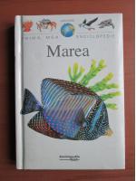 Anticariat: Prima mea enciclopedie. Marea (Editura Rao)