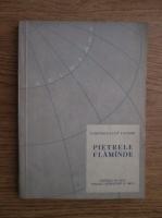 Anticariat: Rabindranath Tagore - Pietrele flamande