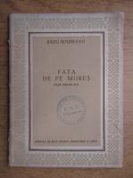 Radu Boureanu - Fata de pe Mures