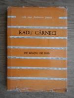 Radu Carneci - Un spatiu de dor