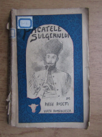 Radu Rosetti - Pacatele sulgeriului (1924)