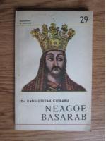 Radu-Stefan Ciobanu - Neagoe Basarab