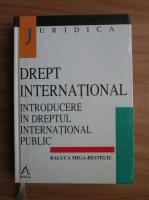 Raluca Miga-Besteliu - Drept international. Introducere in dreptul international public