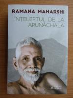 Anticariat: Ramana Maharshi - Inteleptul de la Arunachala